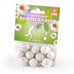 Bombes a fleurs Paquerette blanche 10 billes