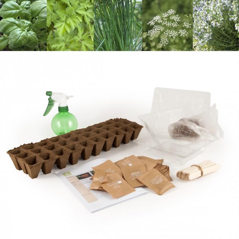 30 plantes aromatiques semer pour jardiner l 39 cole. Black Bedroom Furniture Sets. Home Design Ideas