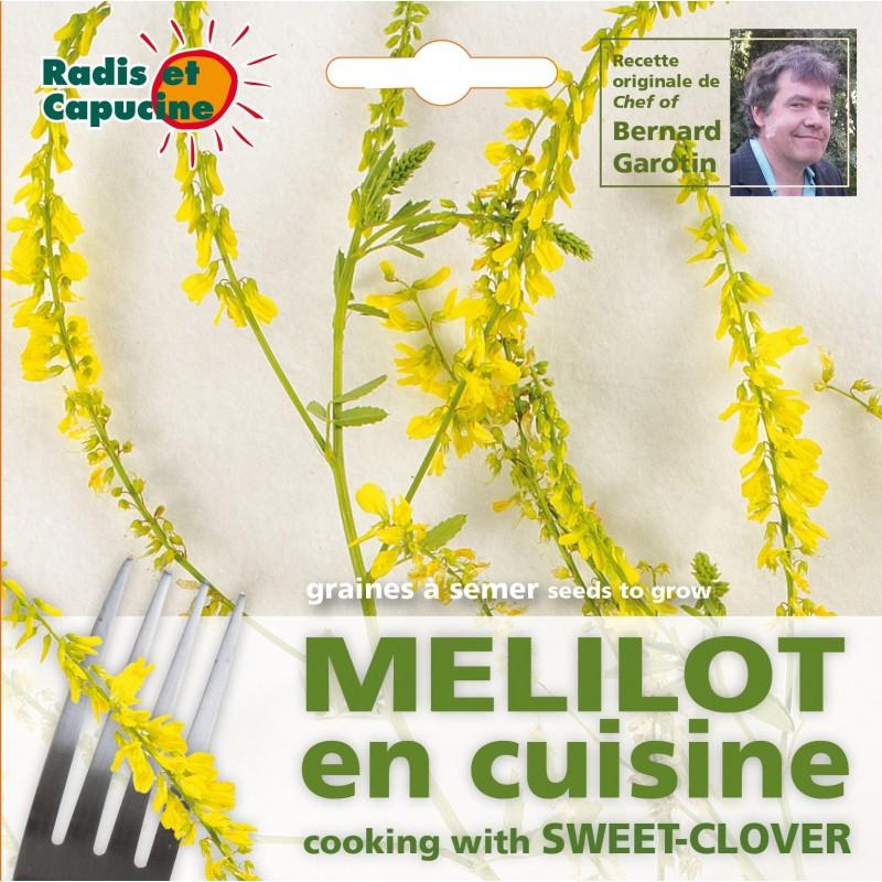 M lilot comestible semer pour cuisiner avec les fleurs - Graine de lupin comestible ...