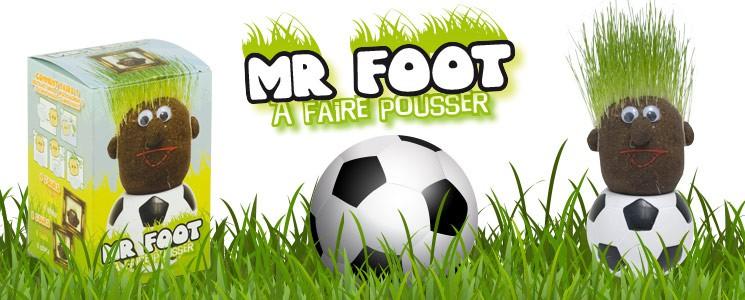 Tête à pousser Mr Foot
