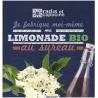 Bocal DIY Limonade fleurs de Sureau Bio