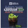 Bocal DIY Liqueur Menthe bio