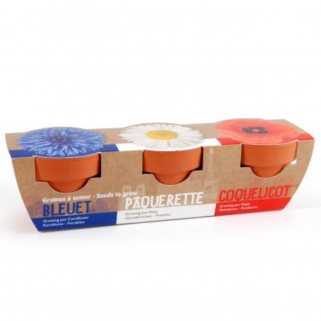 Trio Pots Terre cuite 6 cm  Bleu blanc rouge