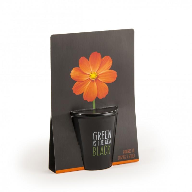 kit de semis collection black cosmos orange. Black Bedroom Furniture Sets. Home Design Ideas