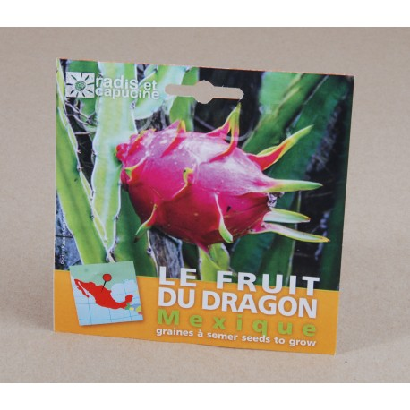 Sachet 13x13 cm fruit du dragon