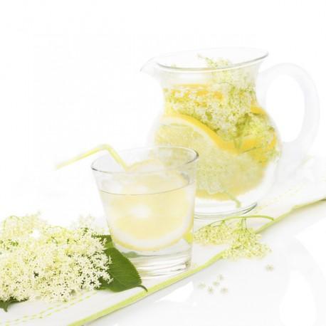 Limonade au Sureau Fabrication Maison avec fleurs bio