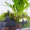 Pandas dans une forêt de palmiers en terrarium