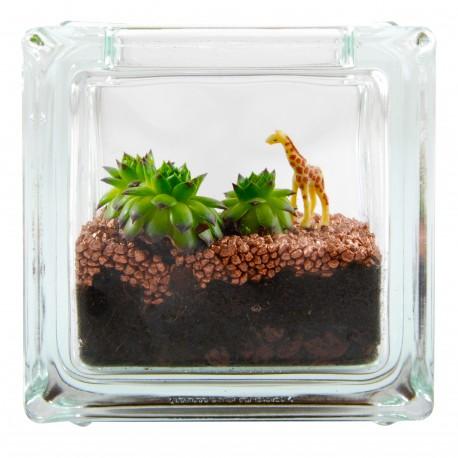 Girafe dans son mini terrarium brique en verre avec succulente