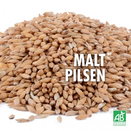 Malt Pilsen Bio 3-3,5 EBC - 1 kg