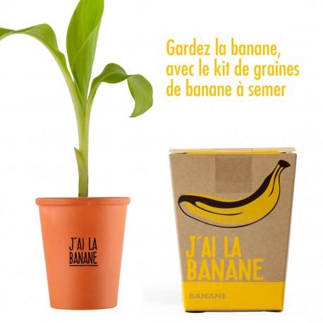 """Kit """"J'ai la super banane !"""" - graines de bananier"""