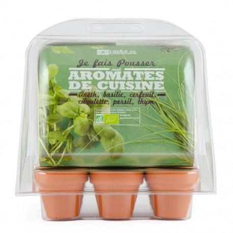 Serre 6 pots plantes aromatiques bio