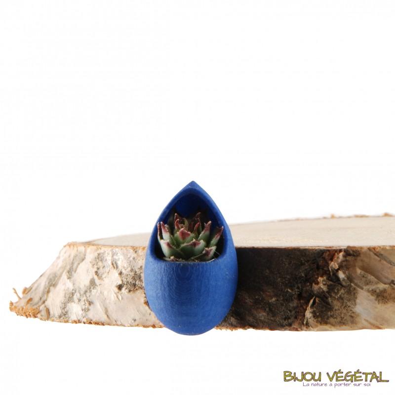 broche goutte coloris bleu avec plante vivante. Black Bedroom Furniture Sets. Home Design Ideas