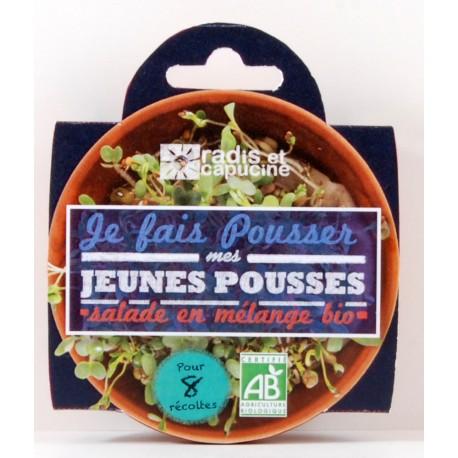 Coupelle jeunes pousses Salade en mélange bio