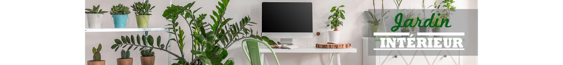 plantes aromatiques bio en pot de culture pour votre maison radis et capucine. Black Bedroom Furniture Sets. Home Design Ideas